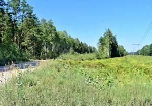 Laimes paugurs, Ķekava 1.63 ha